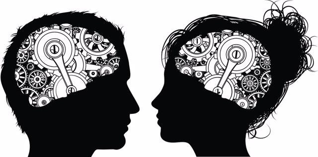 Cerebro, hombre y mujer