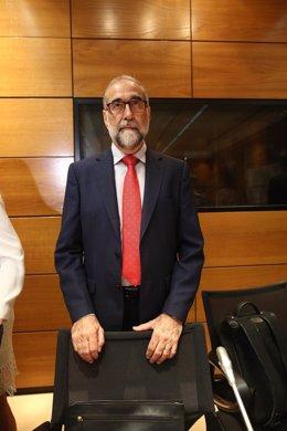 El consejero de Salud de Navarra,Fernando Domínguez Cunchillos