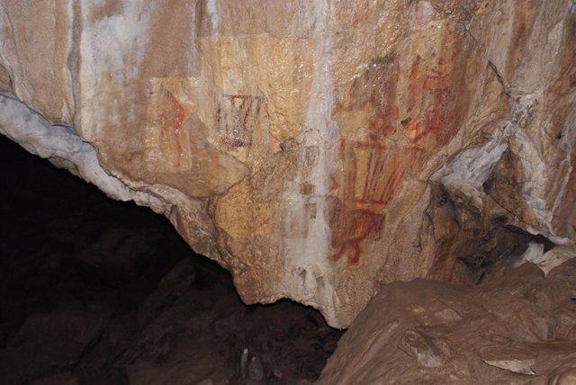Aspecto del camello pintado