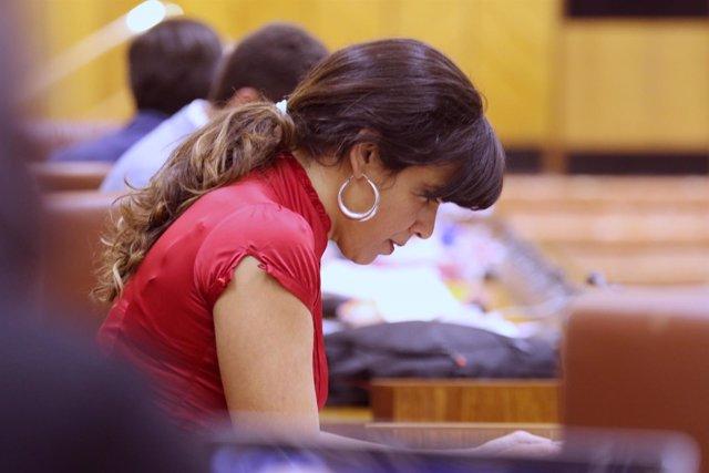La coordinadora general y portavoz de Podemos Andalucía, Teresa Rodríguez