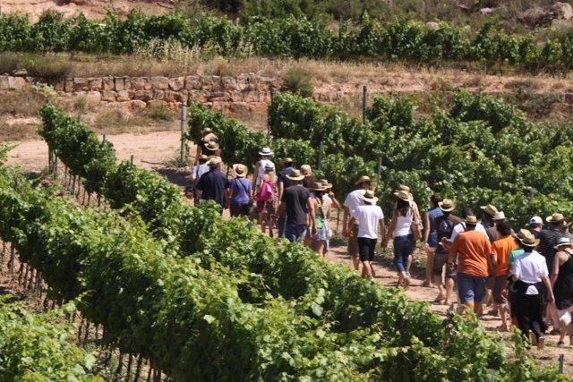 Ruta del Vino de Lleida