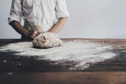 Demuestran que un nuevo tipo de trigo sin gluten no tiene efectos adversos para la salud