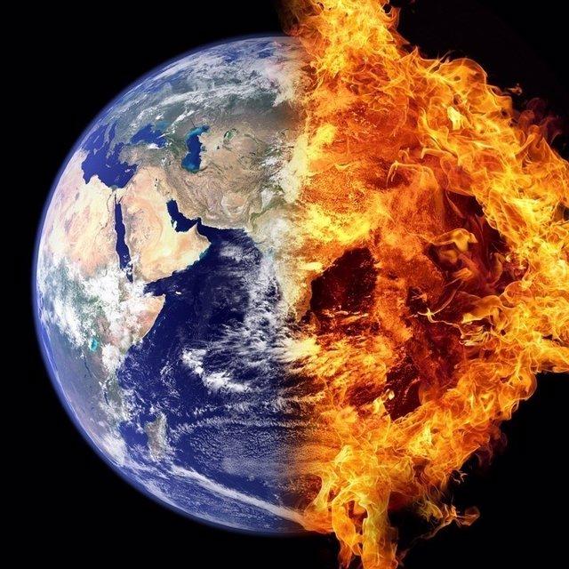El planeta ha perdido 58% de su biodiversidad