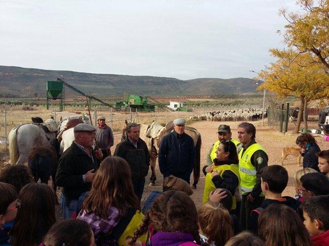 Escolares participan en una jornada en el campo con pastores trashumantes