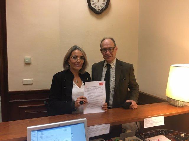 Los diputados socialistas Josefa González Bayo y José Juan Díaz Trillo.