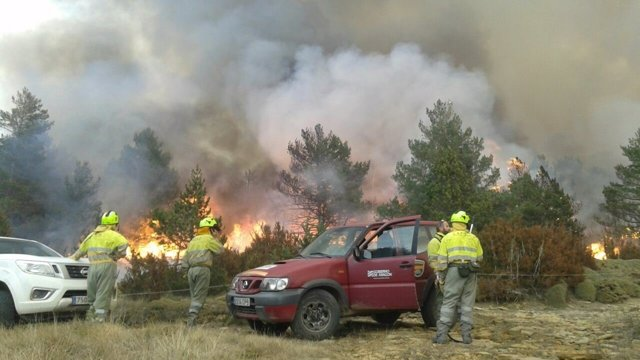 Declarado un incendio forestal en Torre la Ribera.