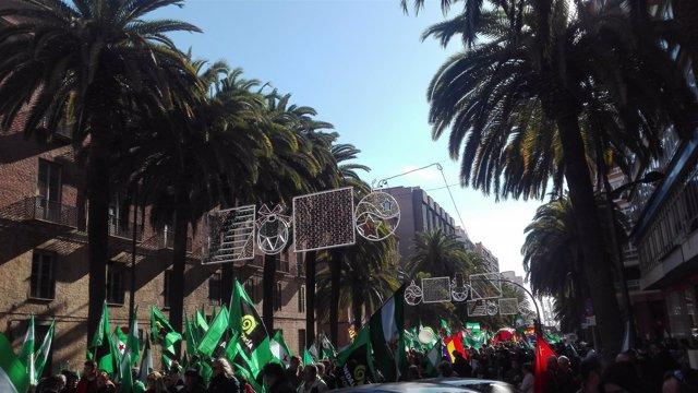 Manifestación en Málaga Plataforma 4D