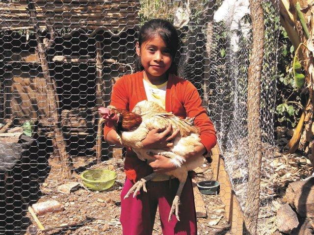 Niña con gallina