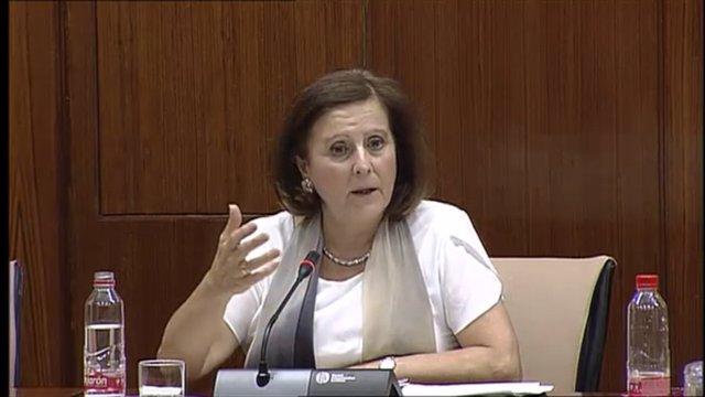 María José Sánchez Rubio en la Comisión de Igualdad