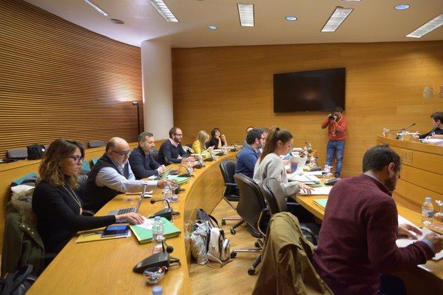 Comisión de Economía en las Corts