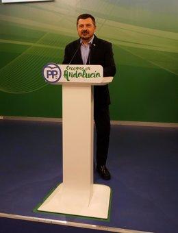 Toni Martín, vicesecretario de Organización, Formación y Electoral del PP-A