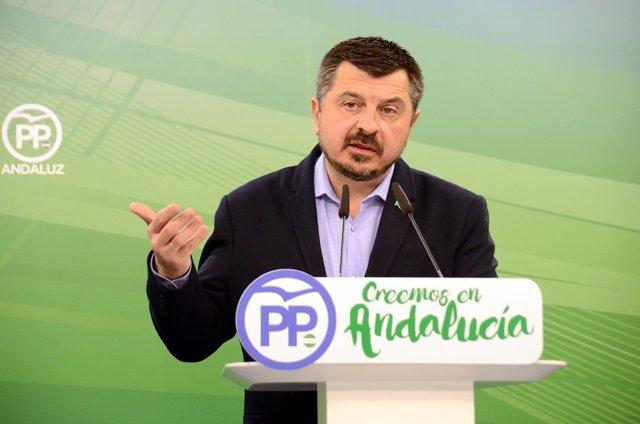 El vicesecretario de Organización, Formación y Electorl del PP-A, Toni Martín