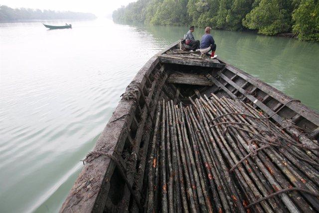 Los residentes de Fiyi repueblan los manglares para combatir el cambio climático