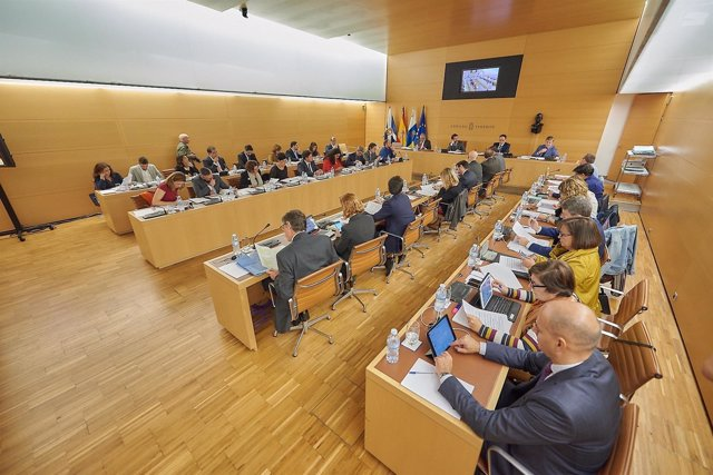 Pleno del Cabildo de Tenerife