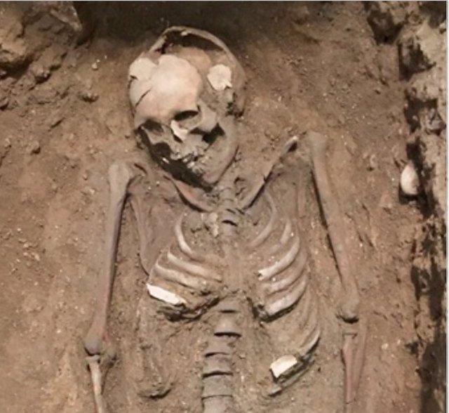 Esqueleto hallado en las excavaciones de la Plaza Manises 7
