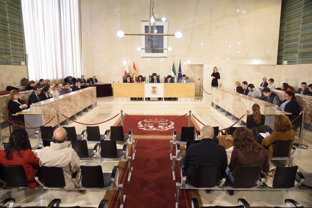 Pleno de Almería