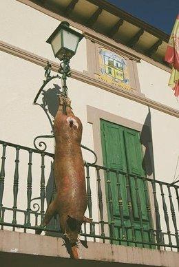 Cerdo colgado