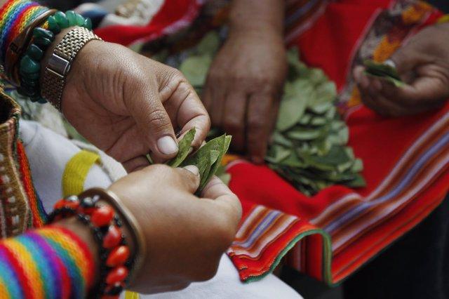 Indígenas con hojas de coca en Perú