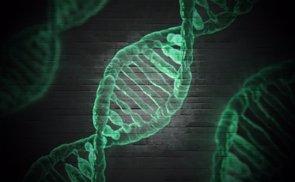 Una nueva prueba proporciona una medida precisa del daño en el ADN de compuestos químicos (PIXABAY/TYPOGRAPHYIMAGES)