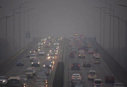 UNICEF alerta que 17 millones de bebés menores de 1 año respiran un aire tóxico que puede afectar su desarrollo cerebral