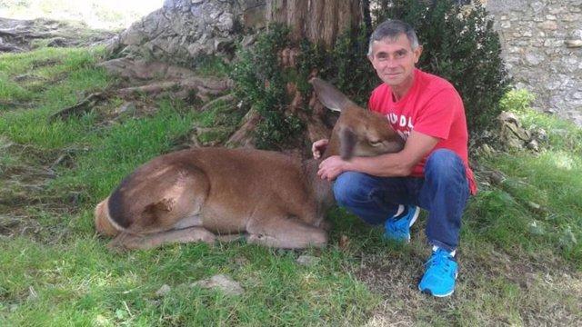 aladino y bambi