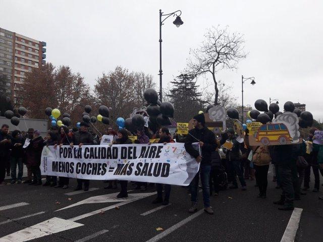Valladolid. Marcha Ecologistas en Acción