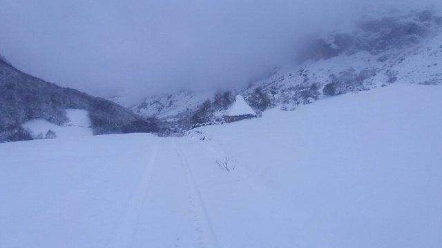 Nieve, nevada, temporal