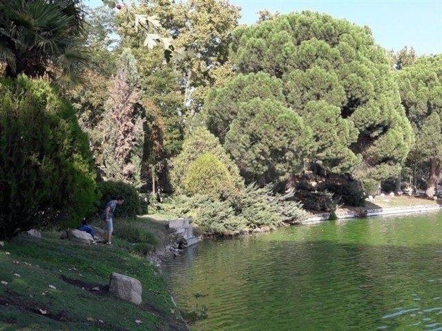 Comienza este martes el vaciado del Lago de Casa de Campo para ...