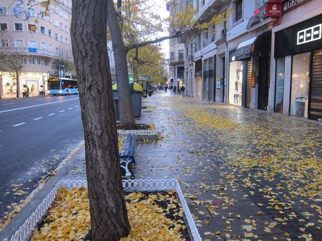 Otoño lluvioso en Santander