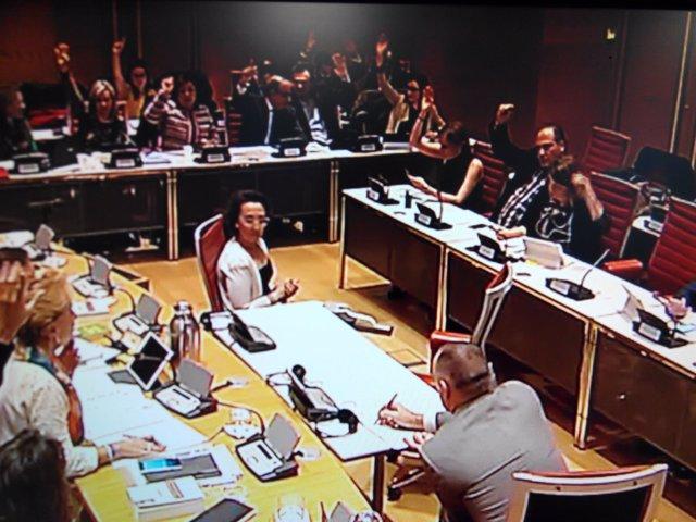 Votación en la Comisión Mixta sobre Drogas