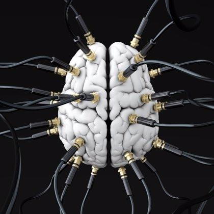 La estimulación eléctrica en el cerebro puede instruir el movimiento