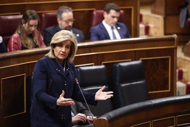 Fátima Báñez en la sesión de control en el Congreso
