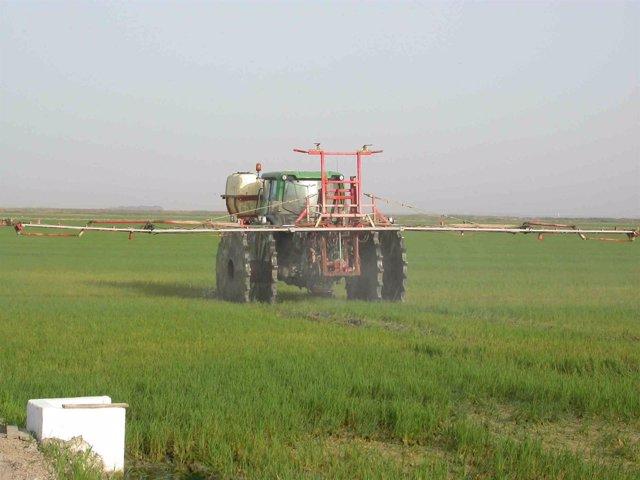 Maquinaria en tratamiento de arroz
