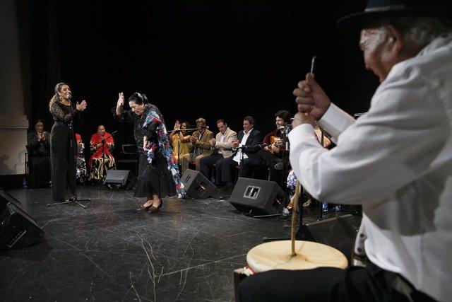 Zambomba en los 'Jueves Flamencos' de Fundación Cajasol
