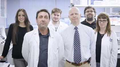 En busca de financiación para sacar adelante un test pronóstico del cáncer renal
