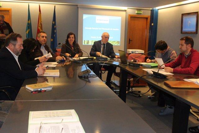 Reunión del Consejo Forestal