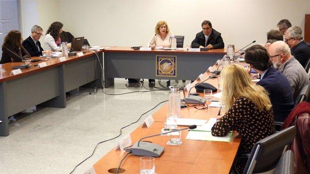 Reunión del Consejo Social de la Universidad Pablo de Olavide