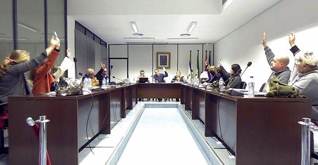 Pleno del Ayuntamiento de Valencina.