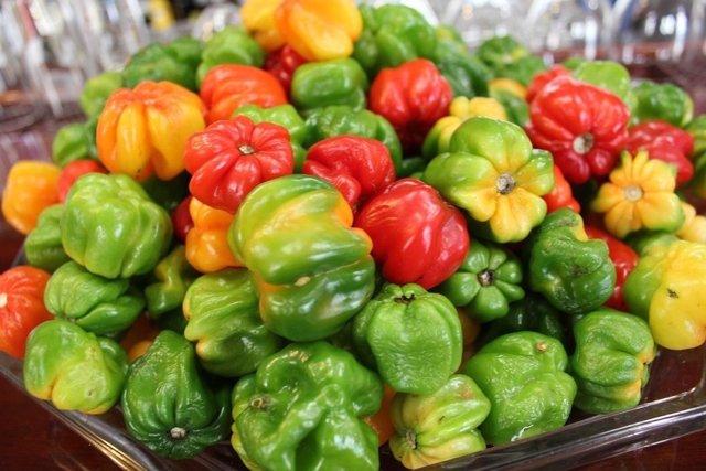 Pimientos, verdura, agroalimentación