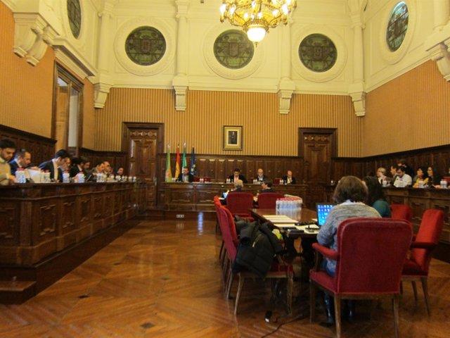 Pleno en la Diputación de Jaén