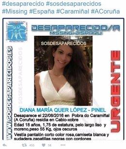 Alerta de la desaparición de Diana María Quer López-Pinel