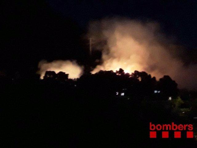 Incendio forestal en Castelldefels (Barcelona)