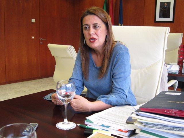 La consejera andaluza de Educación, Sonia Gaya