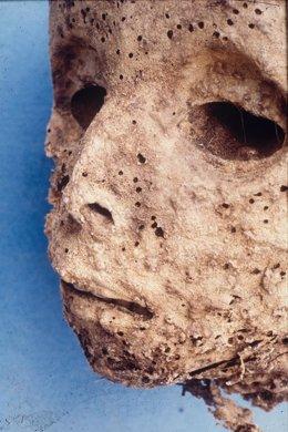 Momia encontrada en la Basilica de San Domenico Maggiore en Nápoles