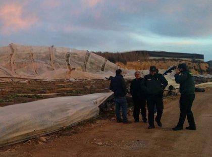 Asaja estima en al menos 200 las hectáreas de invernaderos afectadas por el tornado del sábado en El Ejido (Almería)
