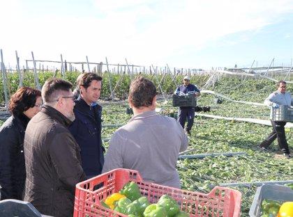 Consejero de Agricultura y alcalde de El Ejido (Almería) visitan zonas afectadas por el tornado cuyos daños se evalúan