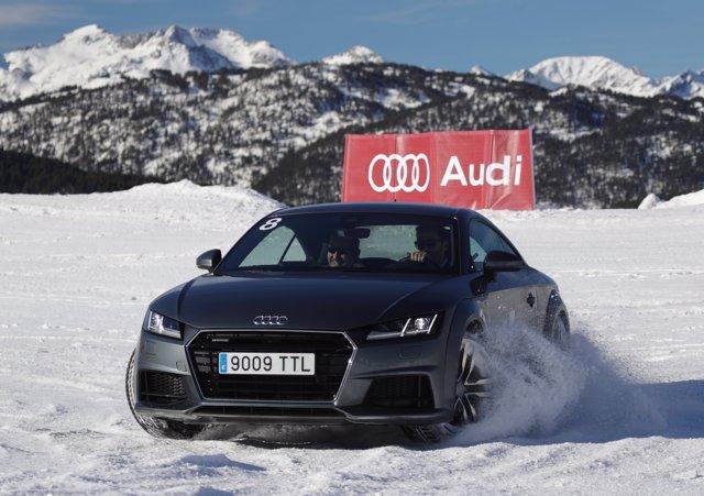 Vehículo Audi en los cursos de conducción en hielo y nieve