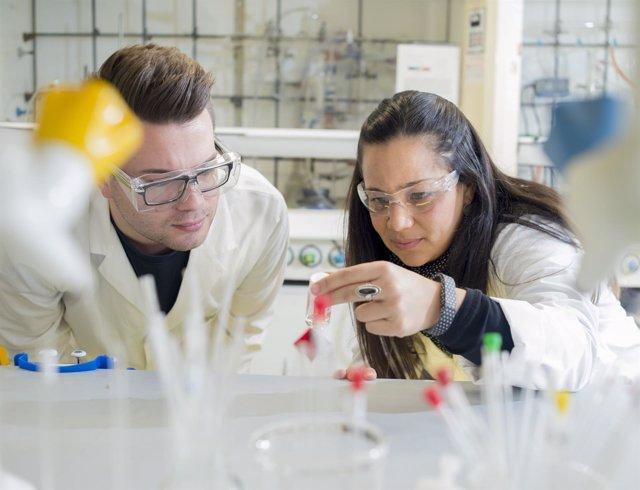 Investigadores de la Universidad de Warwick