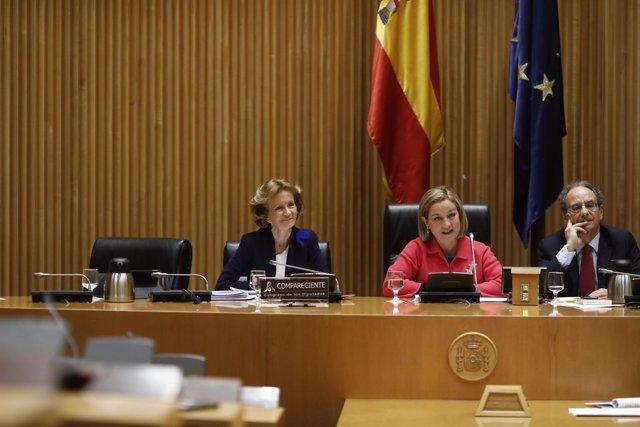 La exministra Elena Salgado comparece en una comisión de investigación