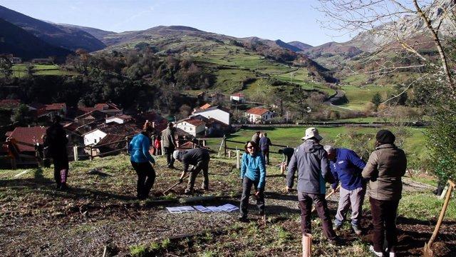 Trabajos de la segunda fase del parque botánico de Lamasón